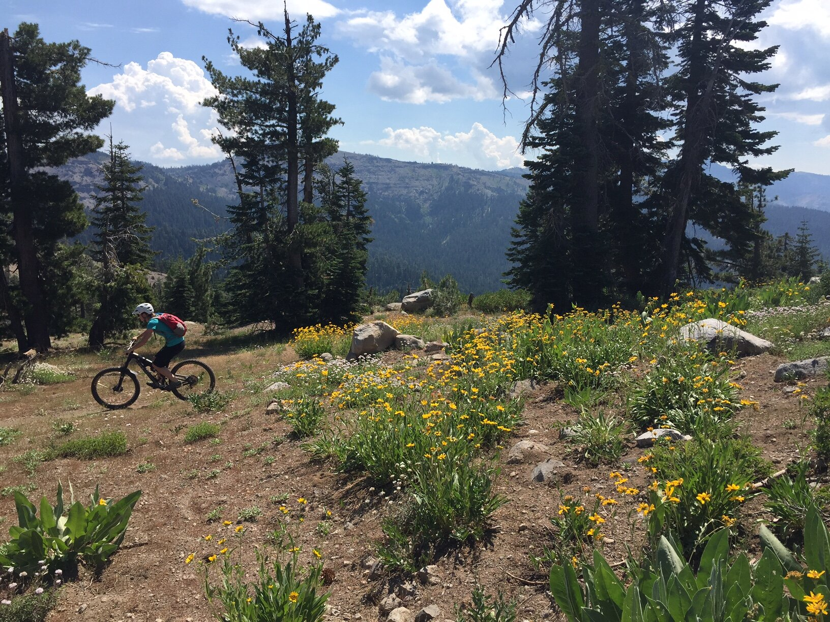 A mountain biker descends from Rowton Peak with the Sierra Crest in the background