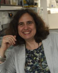 Anne Ferguson-Smith , University of Cambridge, UK