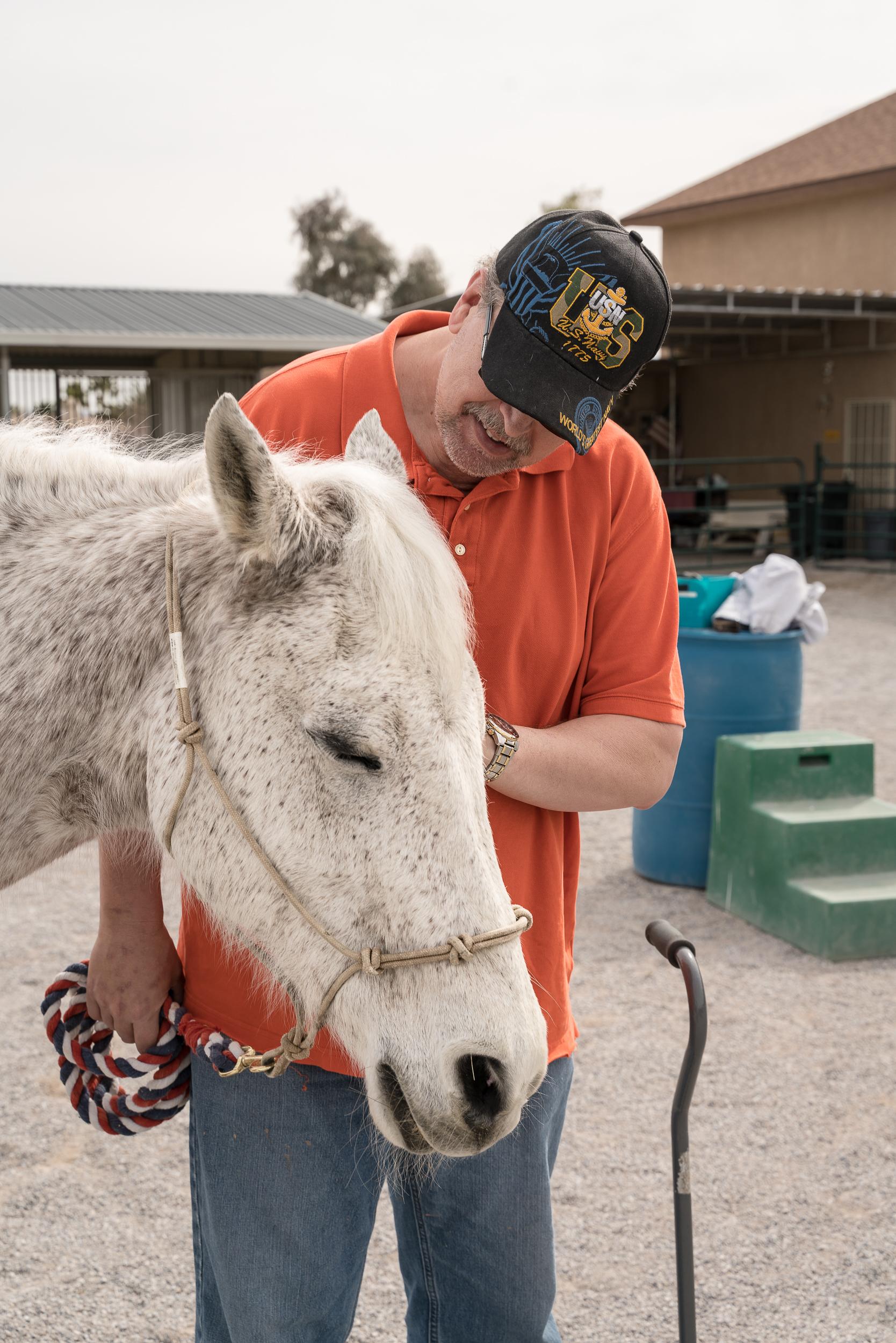 Horses Healing Heroes -