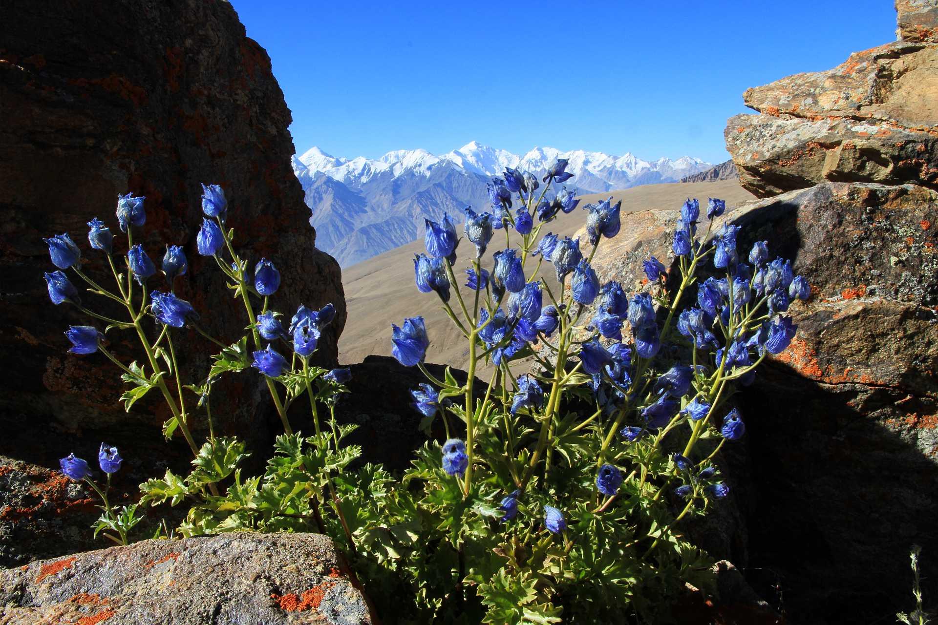 Southern Pamir