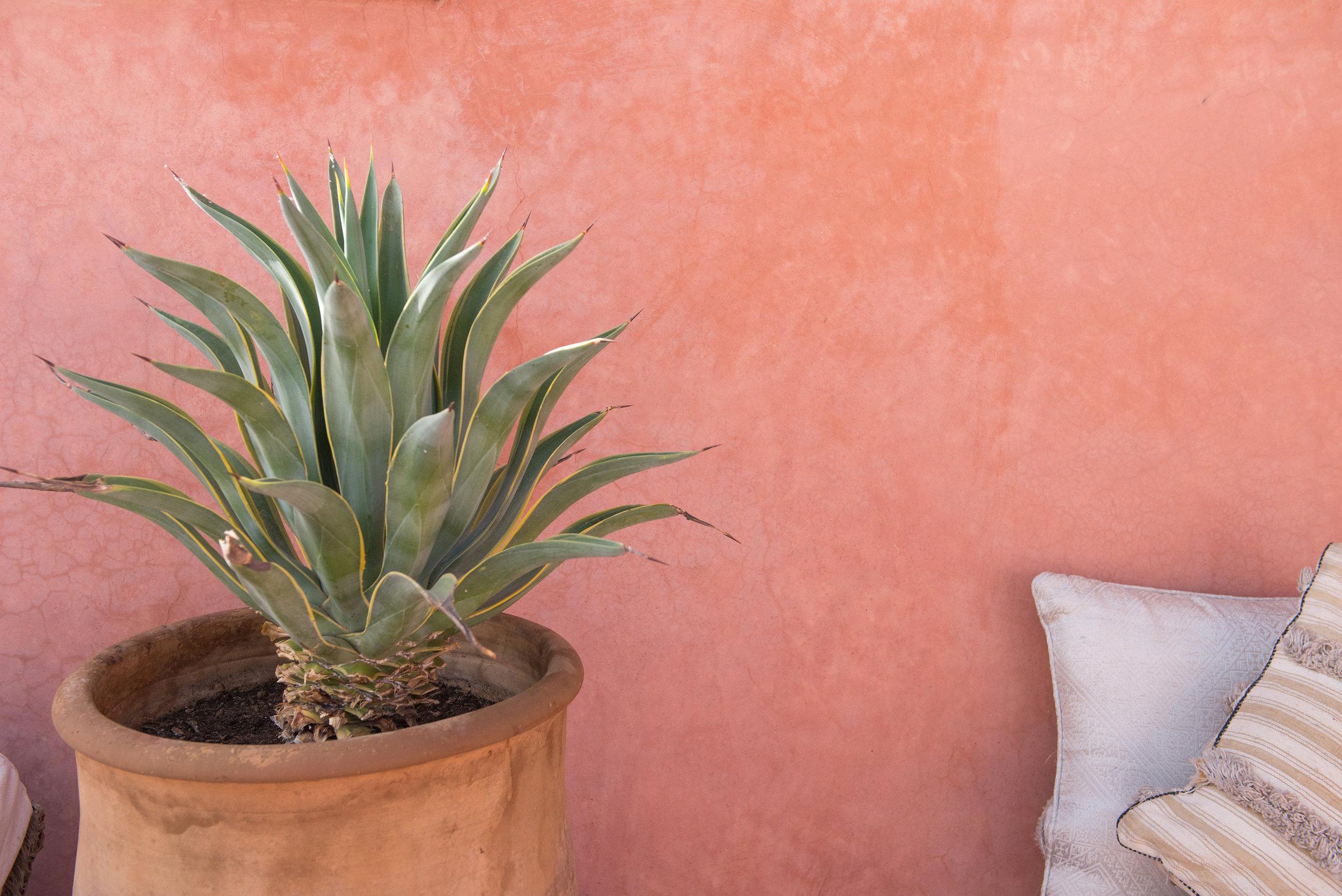 riad-zamzam-marrakech-spa-morocco-luxury-holiday-02