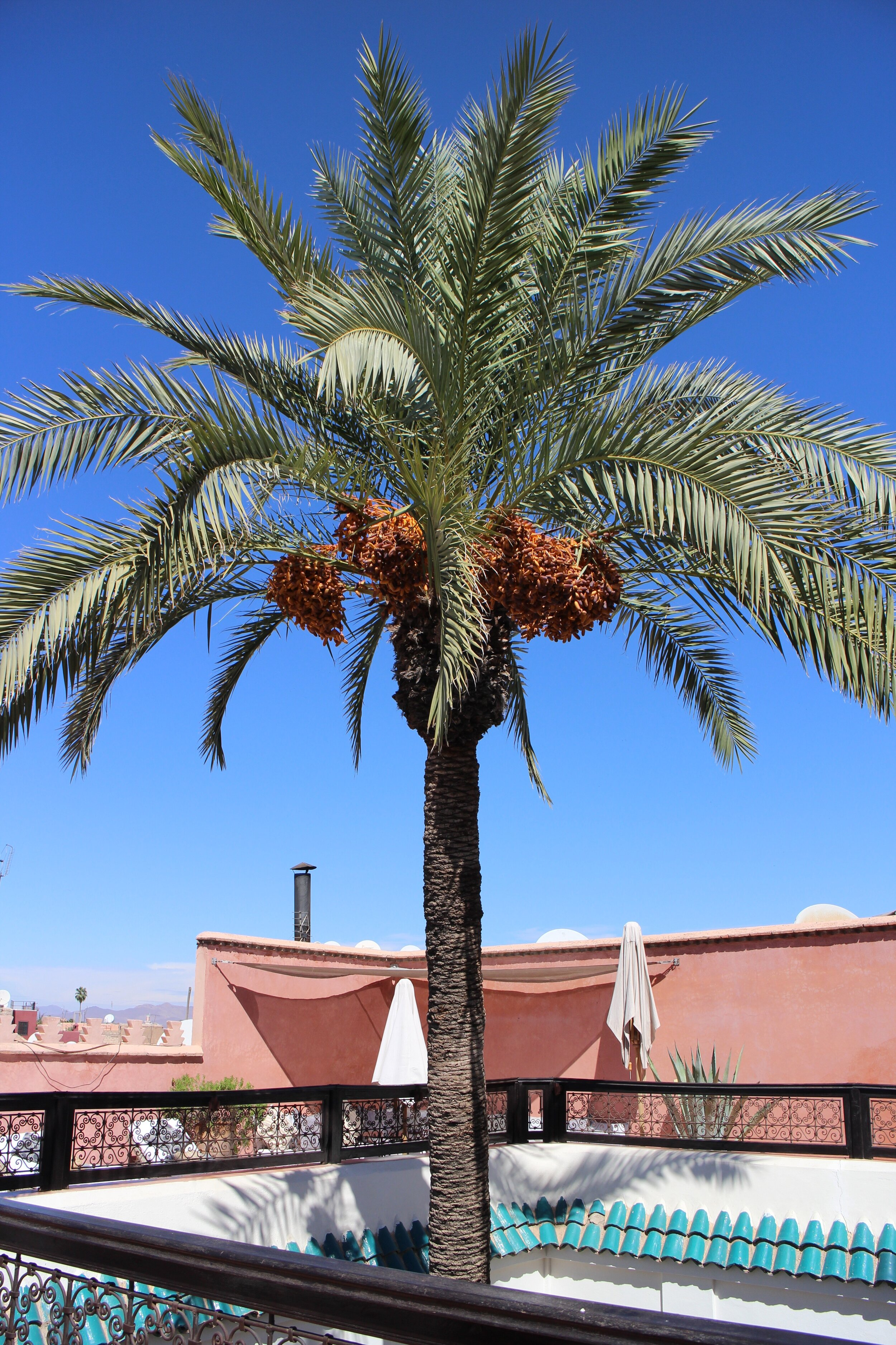 riad-zamzam-marrakech-spa-morocco-luxury-holiday-10