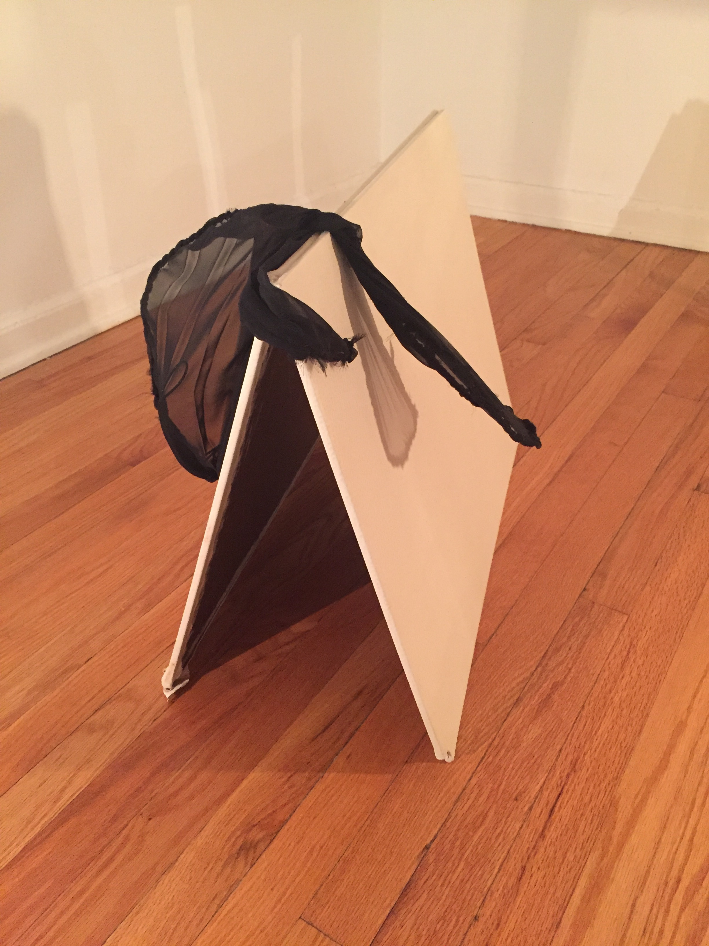 Wings and Reach , 2016  masonite, ostrich leather, chiffon, wire