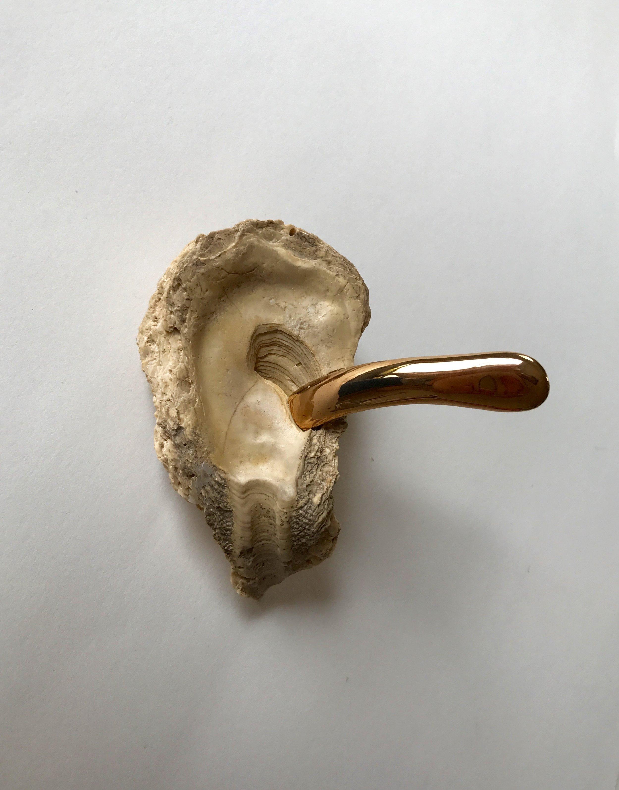 News to God's Ear, 2015  shell, ceramic