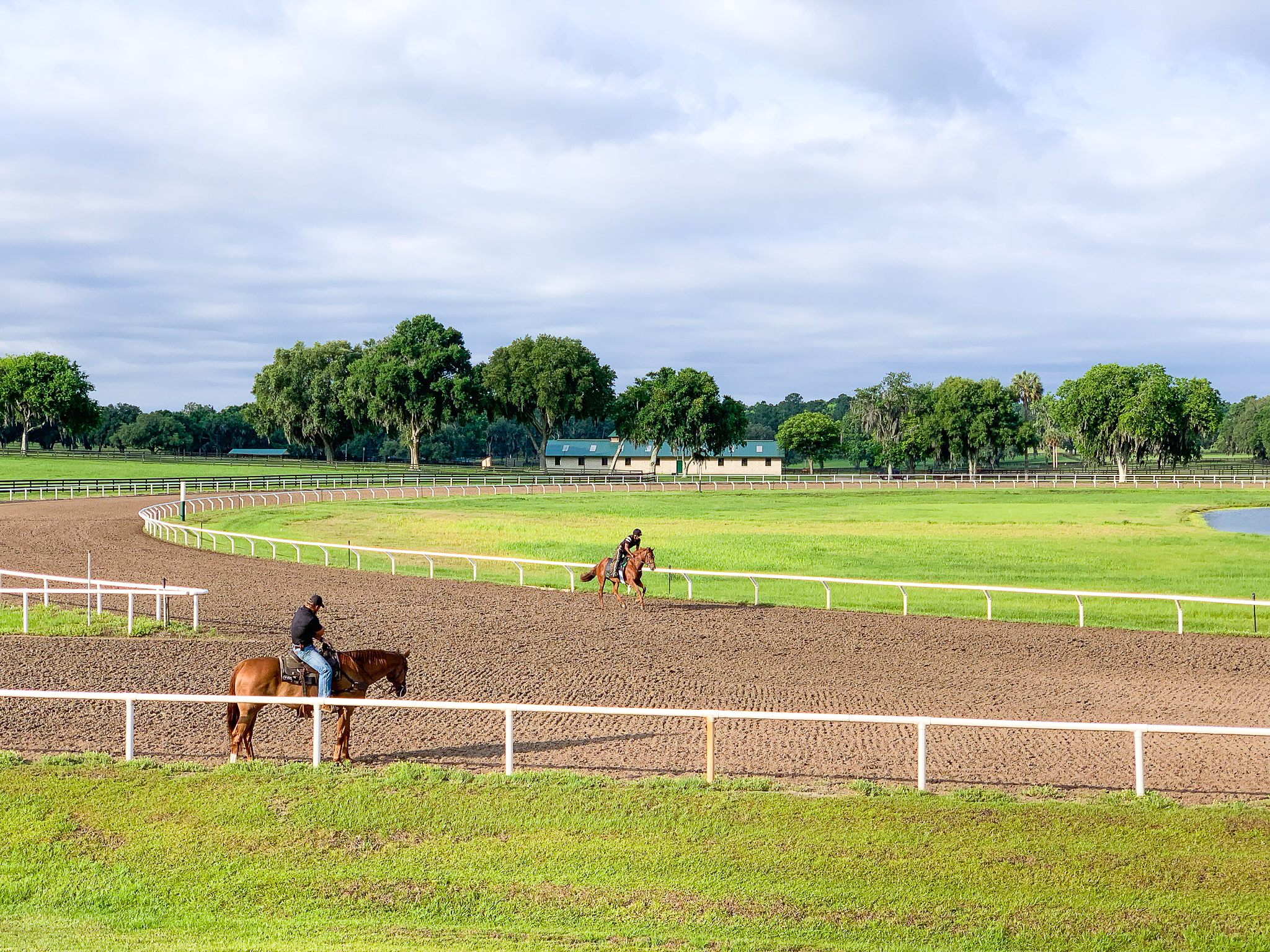 Dirt Training Track - The 5/8ths dirt training track is cared and tended to as if it were a living, breathing animal, consistently being evaluated for what it might need.