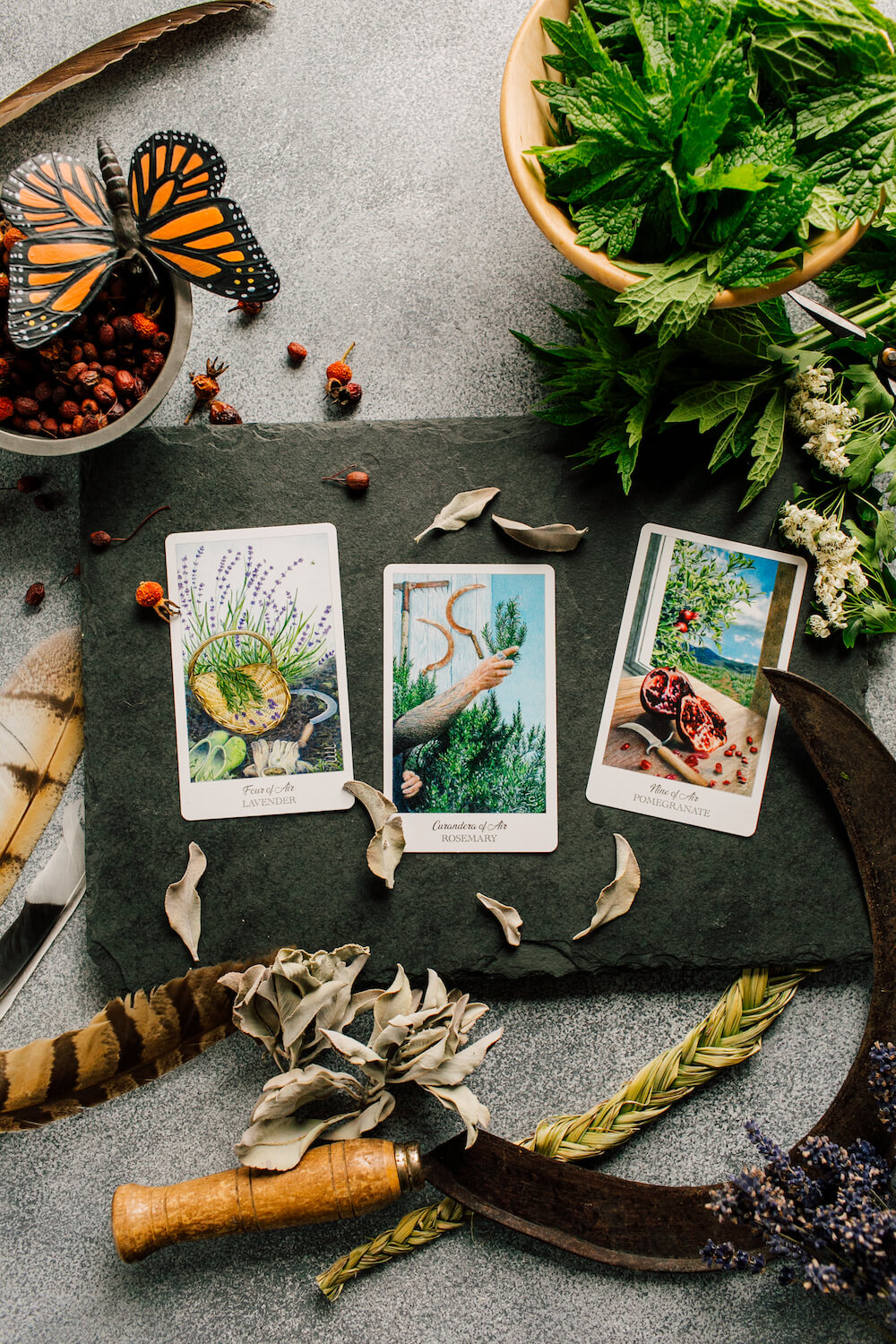 The Herbcrafter's Tarot - The Number represent how the plants contribute to an ecosysytem.