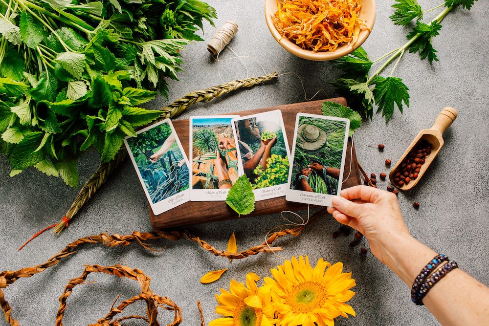 Pentacles become Earth・The Herbcrafter's Tarot