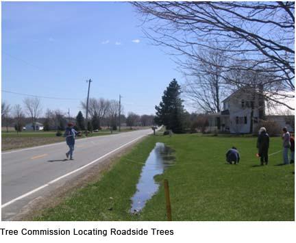 TreeCommissionLocatingRoadsideTrees.jpg
