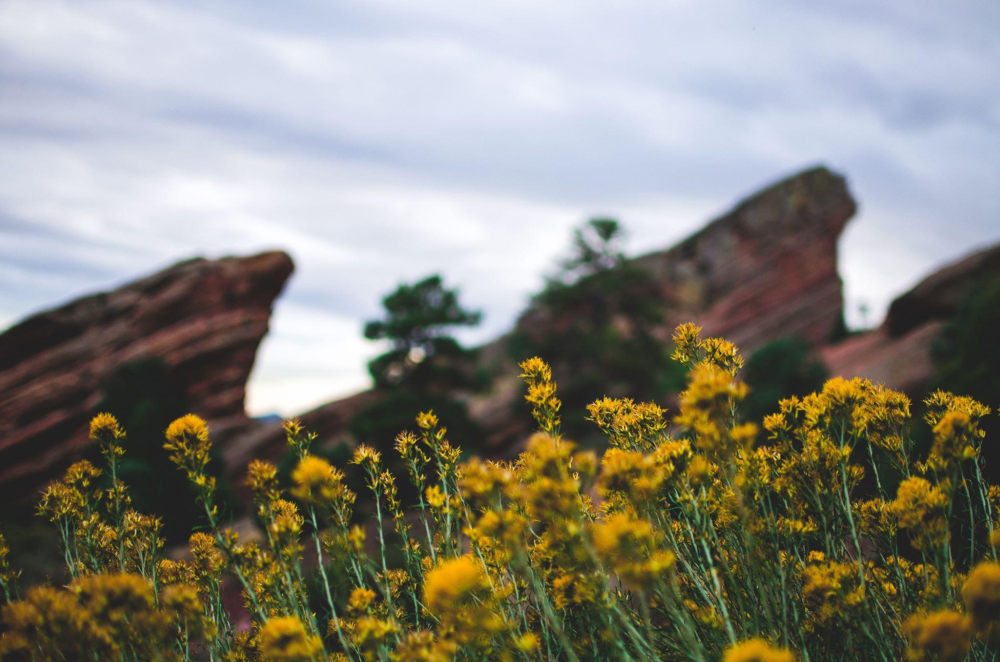 Colorado001.jpg