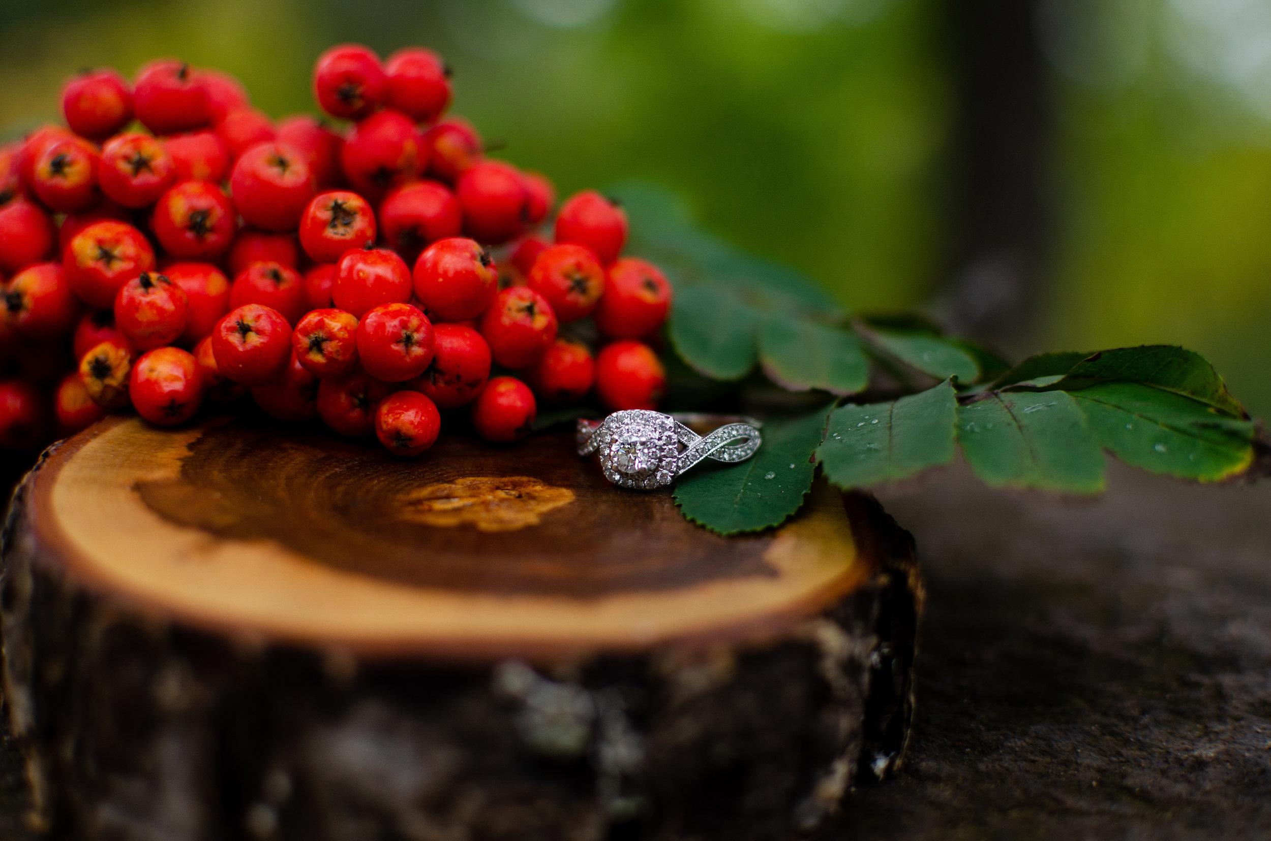 RingBerries.jpg