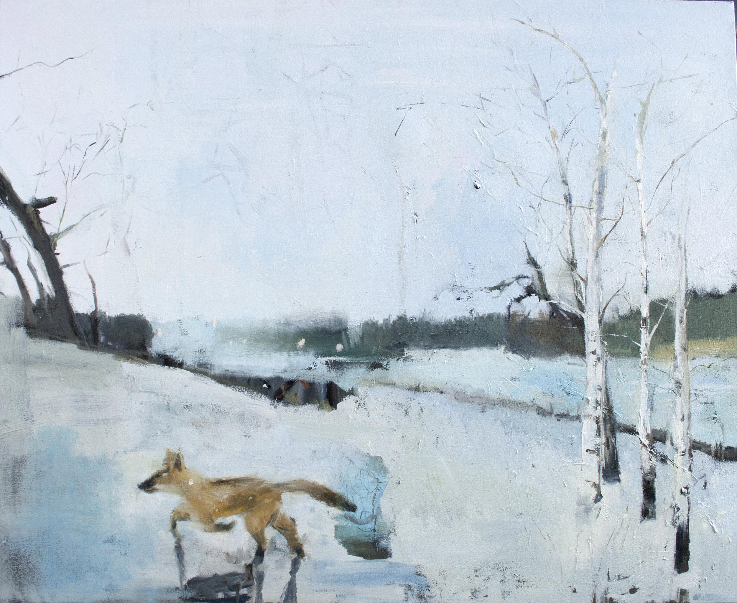 """Border , 2011, oil on canvas, 48"""" x 54"""""""
