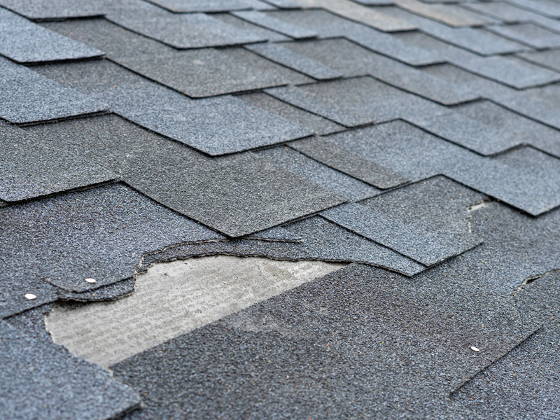 Repairs & Maintenance Roofing Services