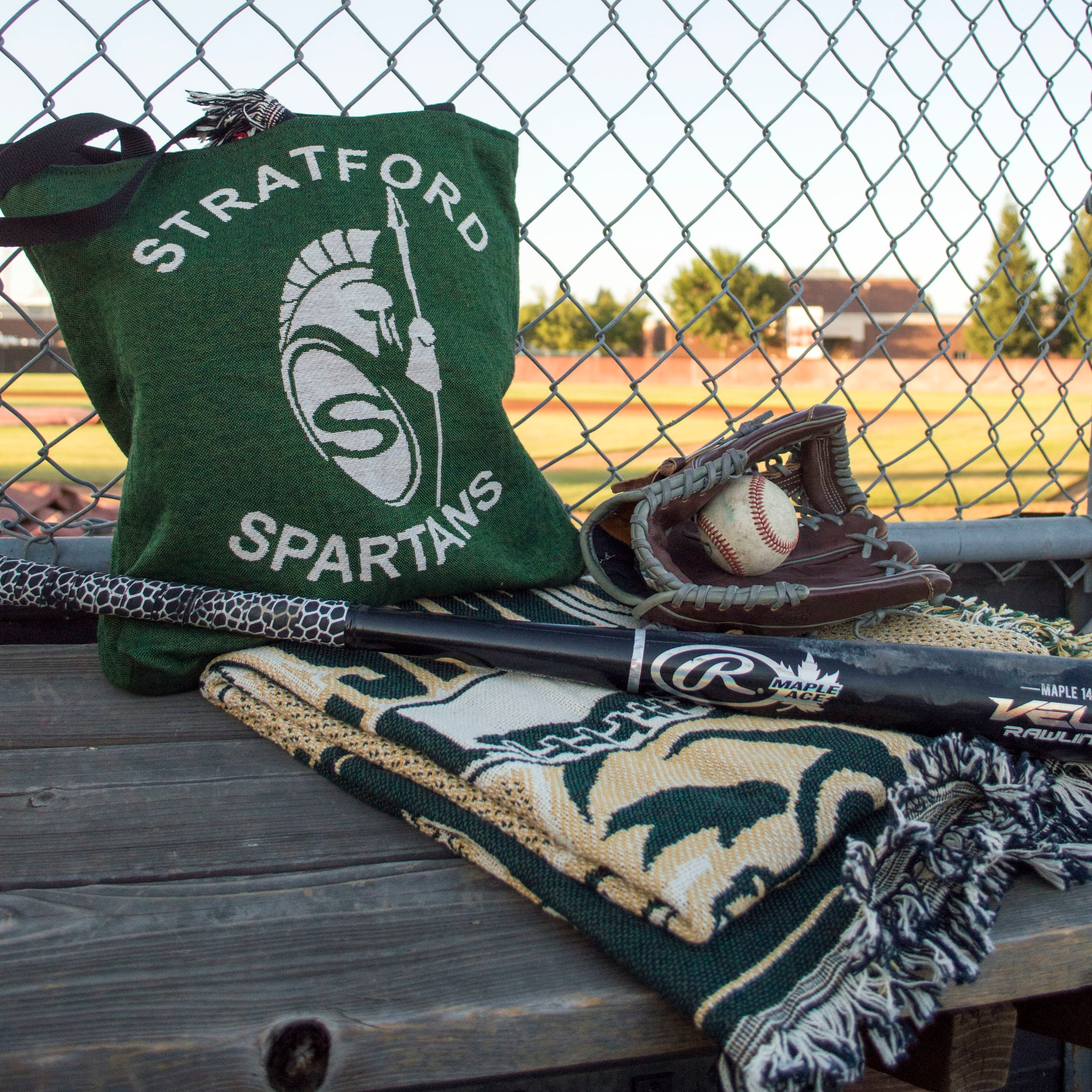 totes & more! - Totes, Scarves and Pillows designed to Support Your TEAM!