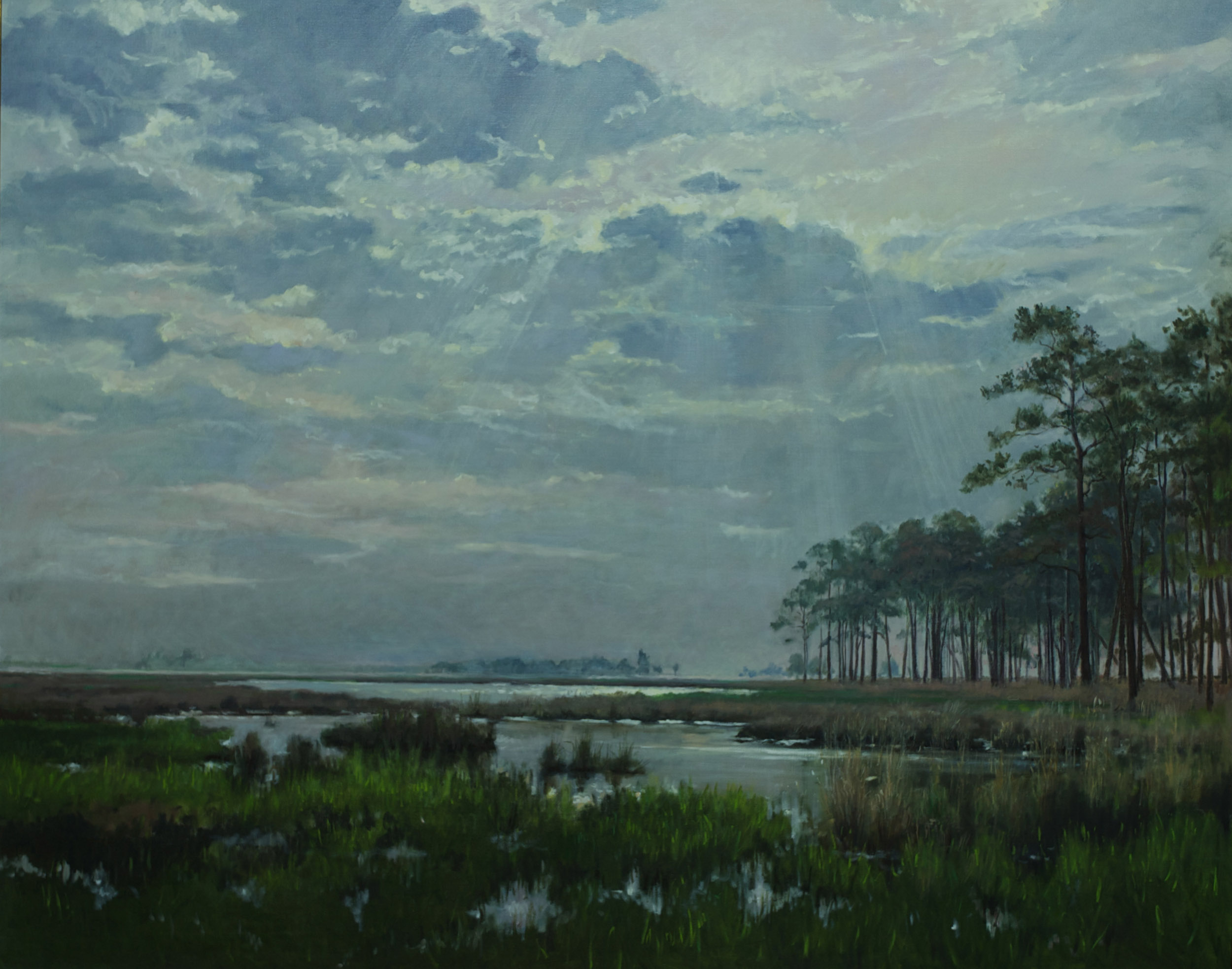 "Blackwater Marsh, MD. 48"" x 60"" Sold"