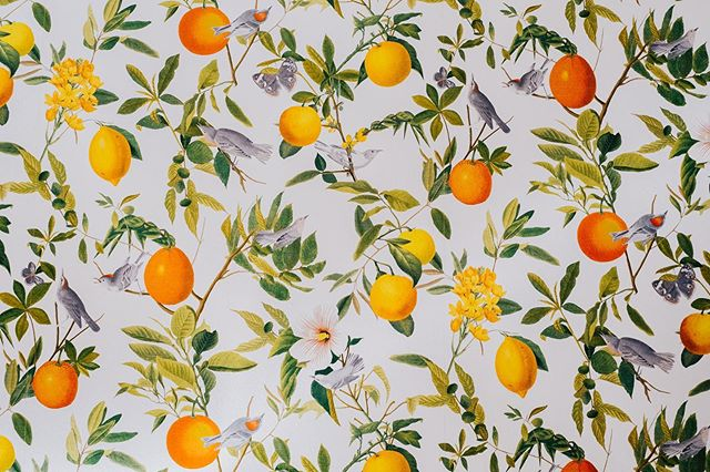 Prints and patterns that start your day off right 🍋 🍊 🍃 . . . . . 📷@searchingtheshadows #portland #portlandme #portlandmaine #visitportland #visitmaine #airbnb #mainerental #newenglandliving #maineliving #rentme #chaosandcreation #fireandcompany #fireandco #noblebarbecue #noblebbq #homedesign #homedecor #mainedecor #mainestyle