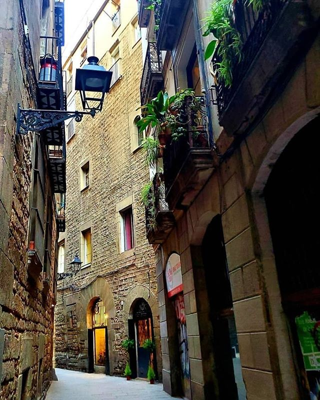Streets of Barcelona. Exploring Barcelona and the Gothic Quarter on the cultural tapas and wine experience. Exclusive small group experiences.  Beautiful pic by the amazing: @jessskaah_  #barcelona #visitbarcelona #gothicquarter #architecture #arquitectura #wine #architecturelovers #bcn #barna #ciutatvella #local #culture #oldest #streets #history #live #experience #neighbourhood #gothic #barrigòtic #catalunya #tastebarcelonatour