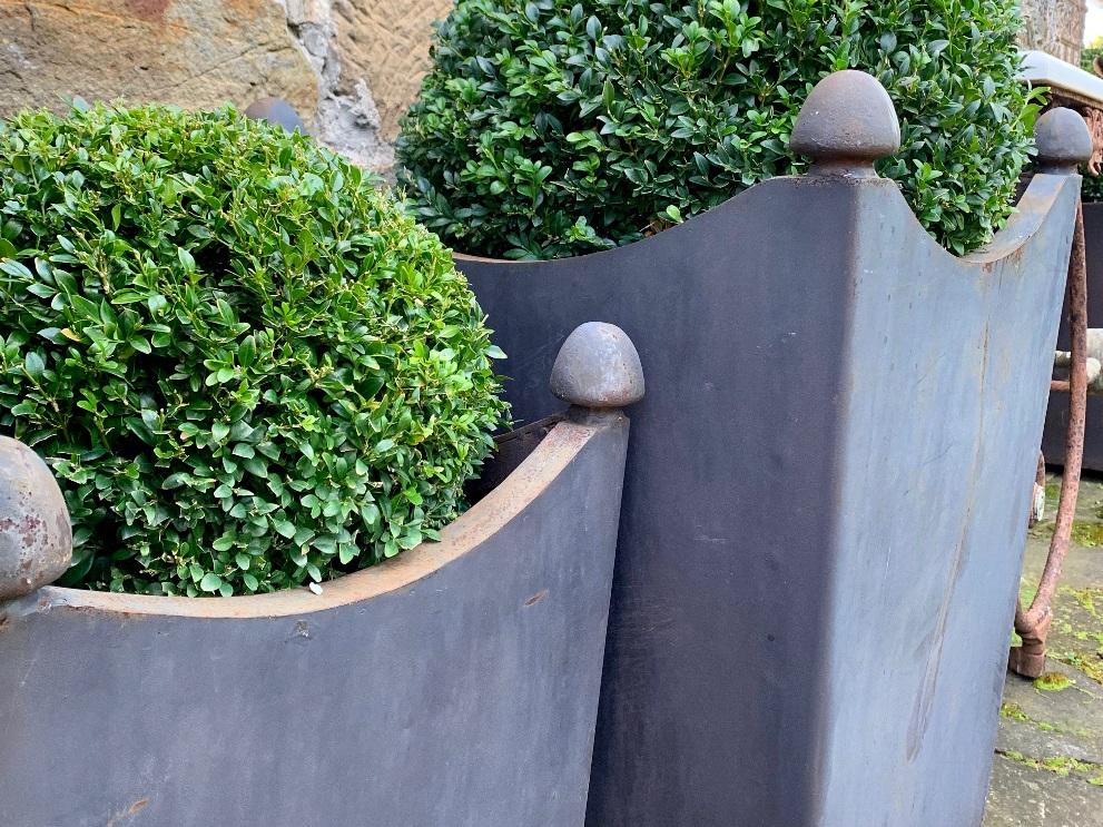 Urns & Planters -