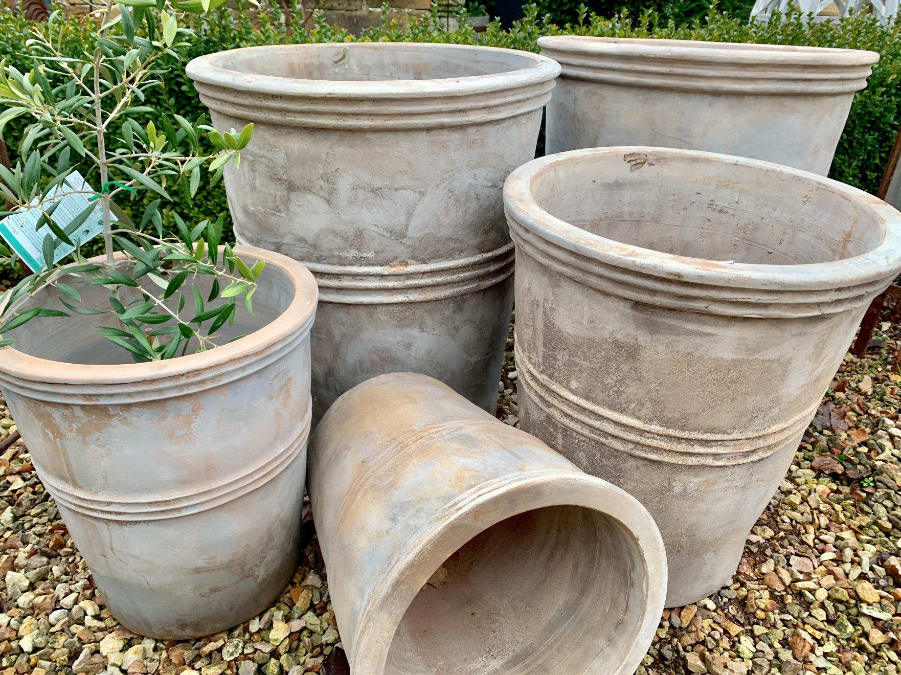 UP1 Antiqua terracotta Astra planters (available three sizes)  $72-$149