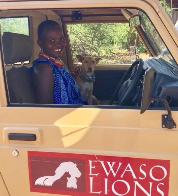Ewaso Lions