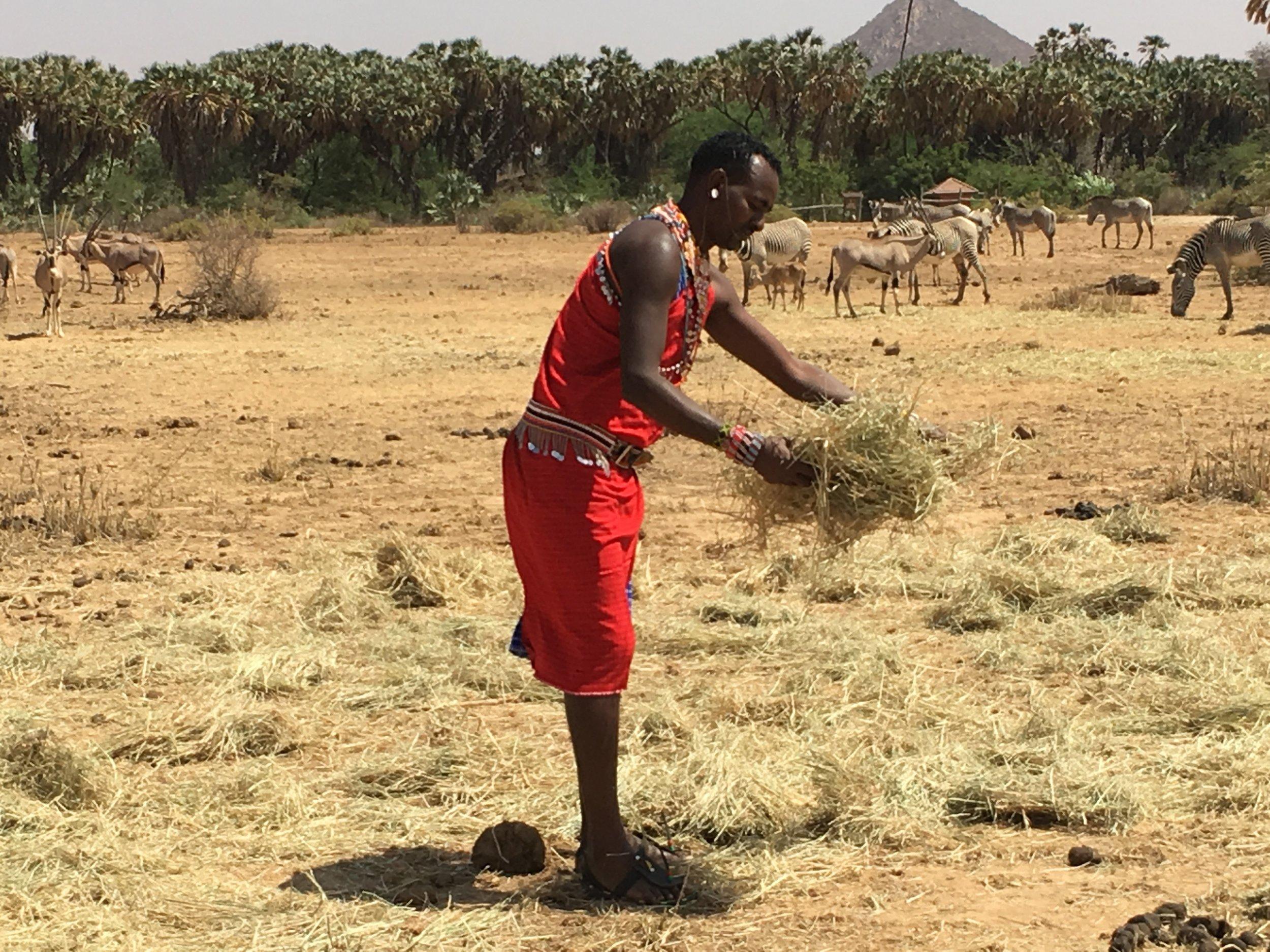 Samburu in Northern Kenya