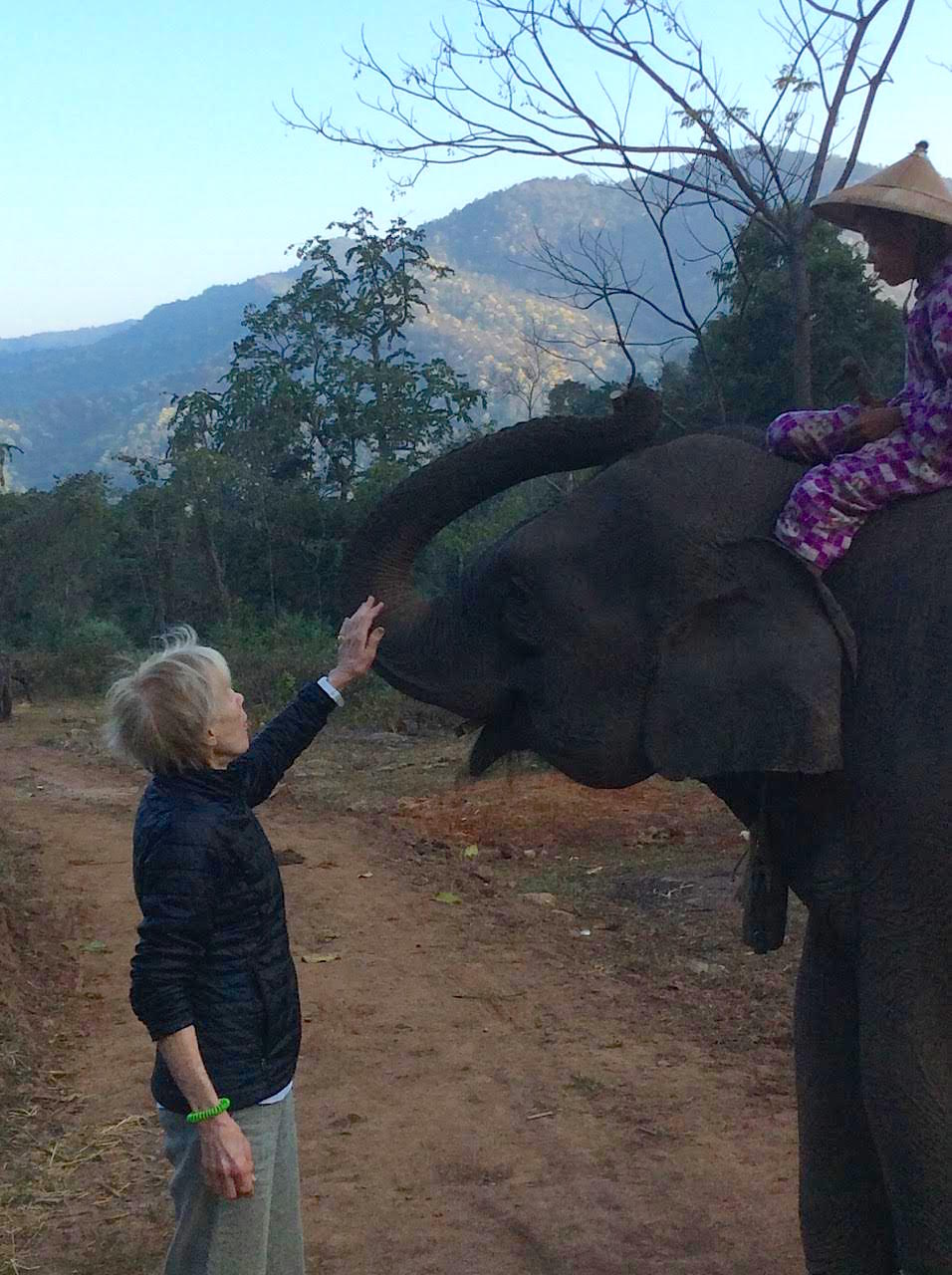 Walking With Elephants Challenge Grant