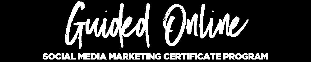 Social School - Social Media Marketing Guided Online.png