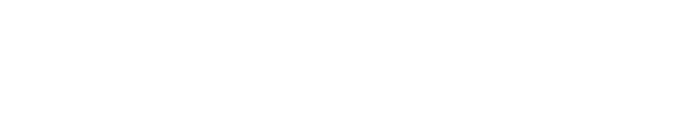 SOCIAL SCHOOL - Digital Marketing Certificate Guided Online.png