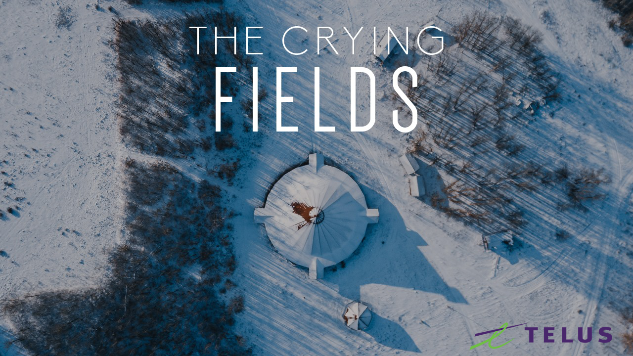 Telus - Mixer and Sound Designer for Telus Sponsored Film The Crying Fields (Click the image to watch the film).