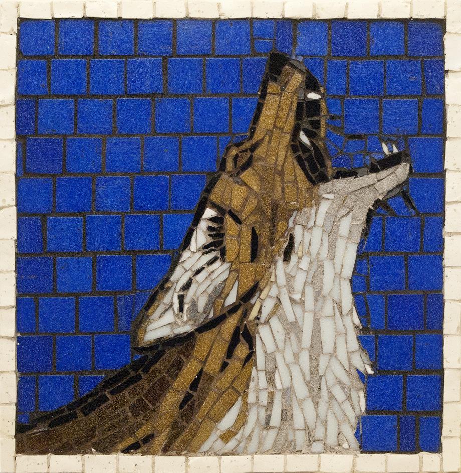 coyote-howling.jpg