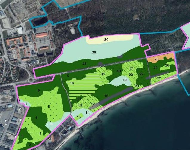 skötselplan 2019 - I Ystads kommuns skötselplan redovisas förslag på 32 skötselområden samt specifika och generella mål och åtgärder för att öka Sandskogens rekreativa värden.
