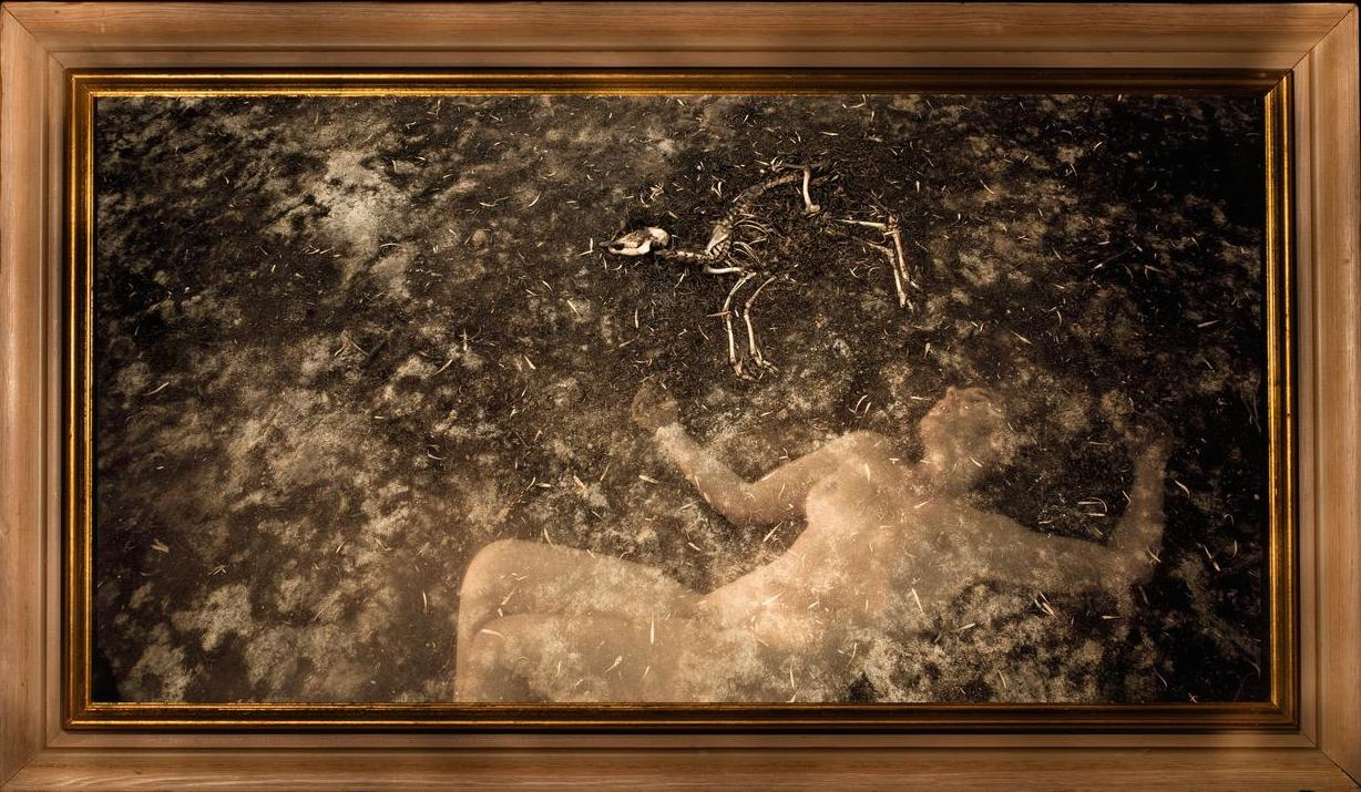 Coming into Being - Dead Dreams Awaken - 2015Archival inks on cotton rag paper305 x 580 mm (print size)380 x 655 mm (framed)Edition 1/15 + 2 AP7280 ZAR