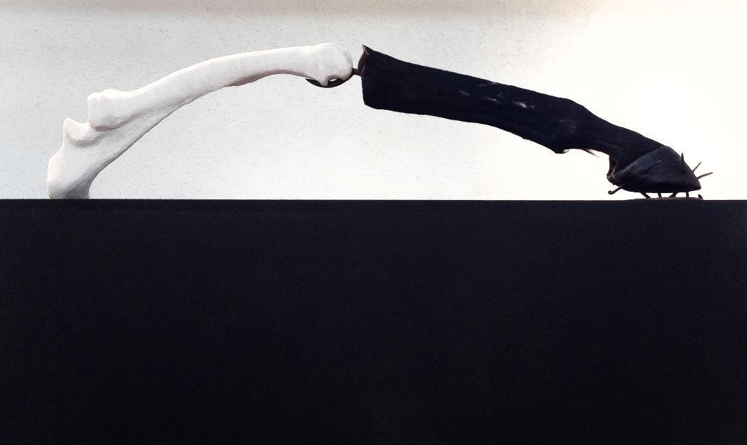Nail - Rhino White Marble and Mummified Horse Leg1200 x 120 x 250 mm10 600 ZAR