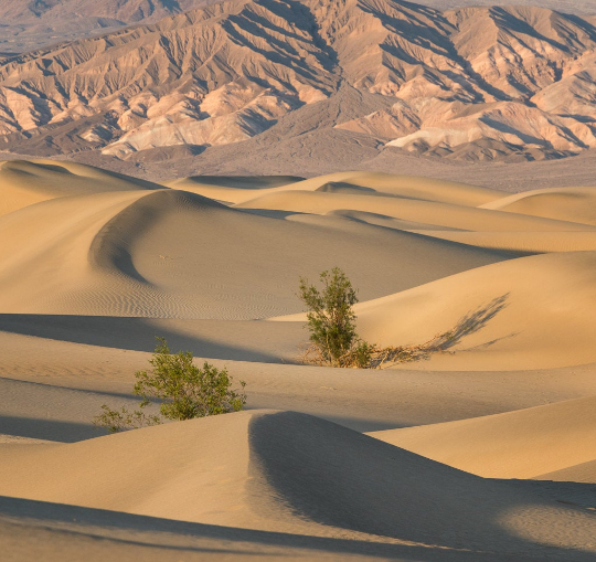 Death Valley Dunes.png