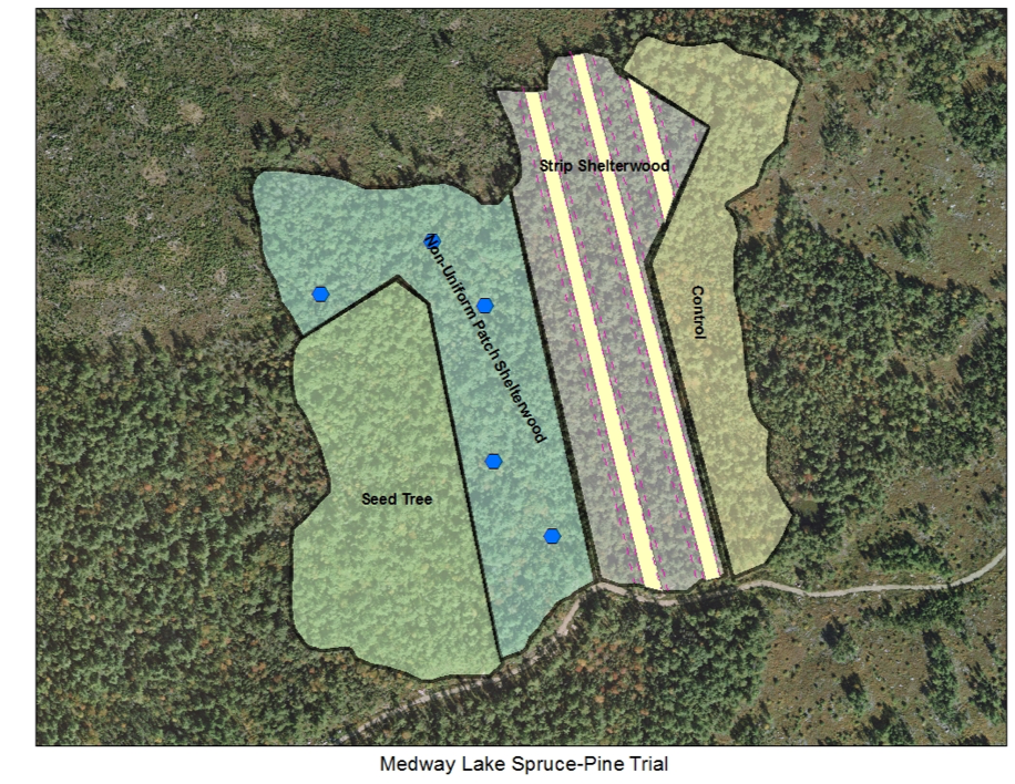 Operations map of the MCFC Spruce-Pine research trial