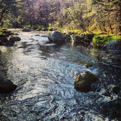 Moose River, Annapolis County (Photo: Katie McLean)