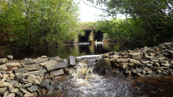 Rock weir and fish slide used to restore upstream access at a barrier culvert in Annapolis County, NS (Photo: Clean Annapolis River Project)