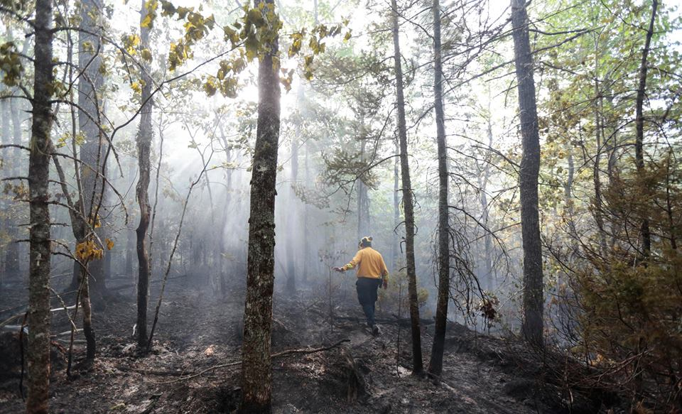 NSDNR firefighter assesses the damage on the ground (NS Government photo)