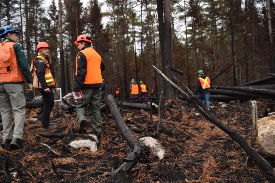 Fire tour in the area affected by the Seven Mile Lake fire in 2017.