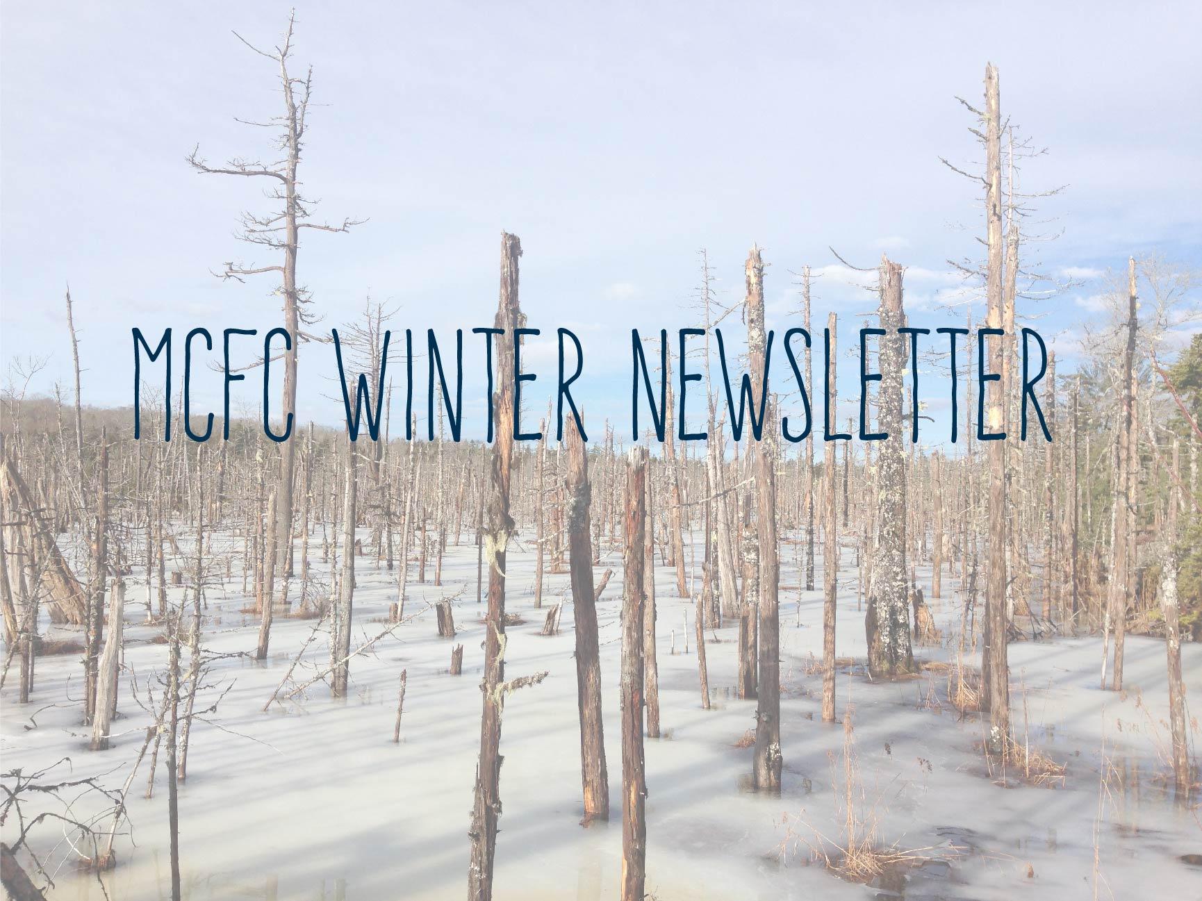 winternewslettergraphic.jpg