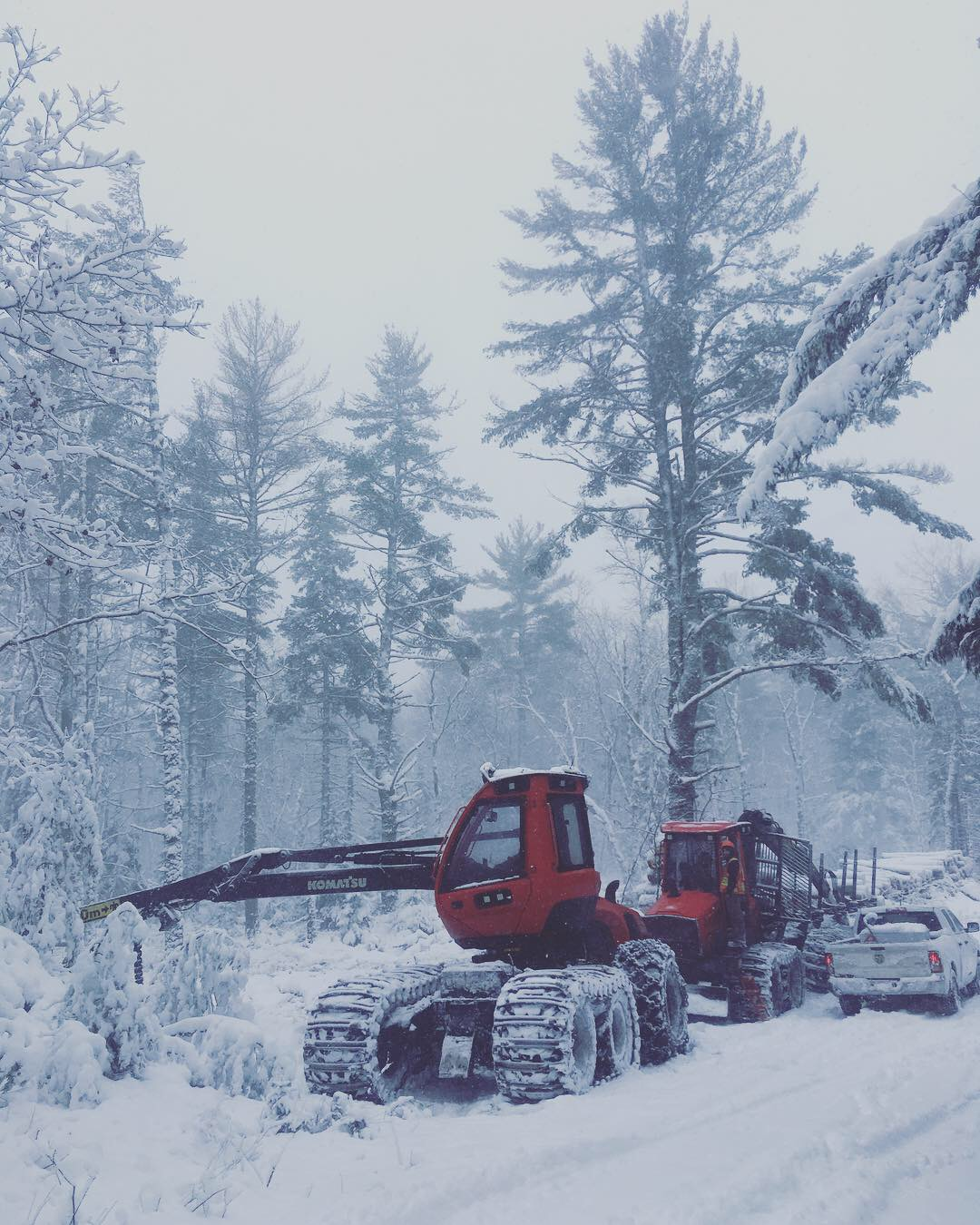 Lewis Logging's equipment caught roadside during some wintery weather in December.