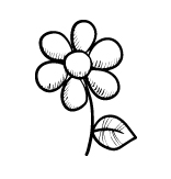image-flower.jpg