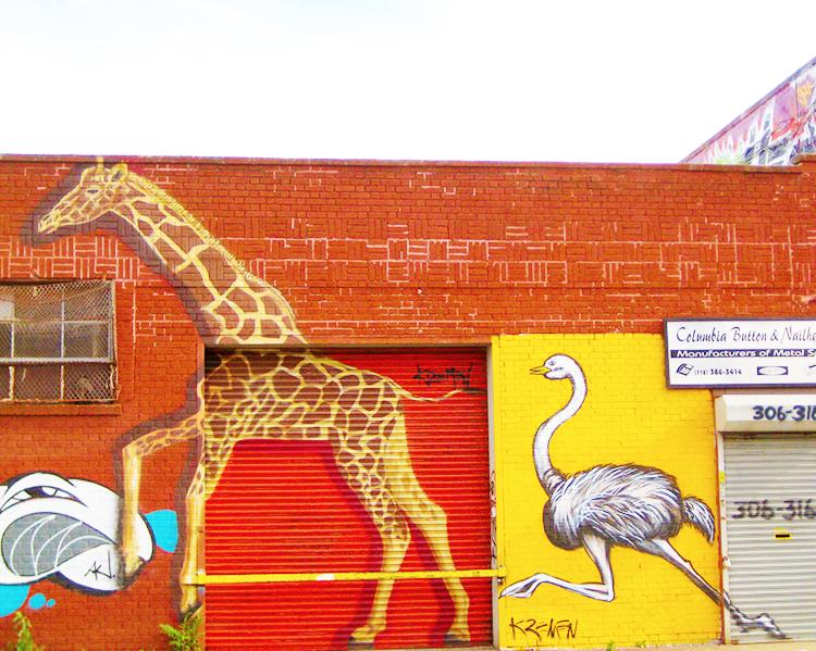 Giraffe and ostrich on the street art or graffiti around Bushwick, Brooklyn, NYC