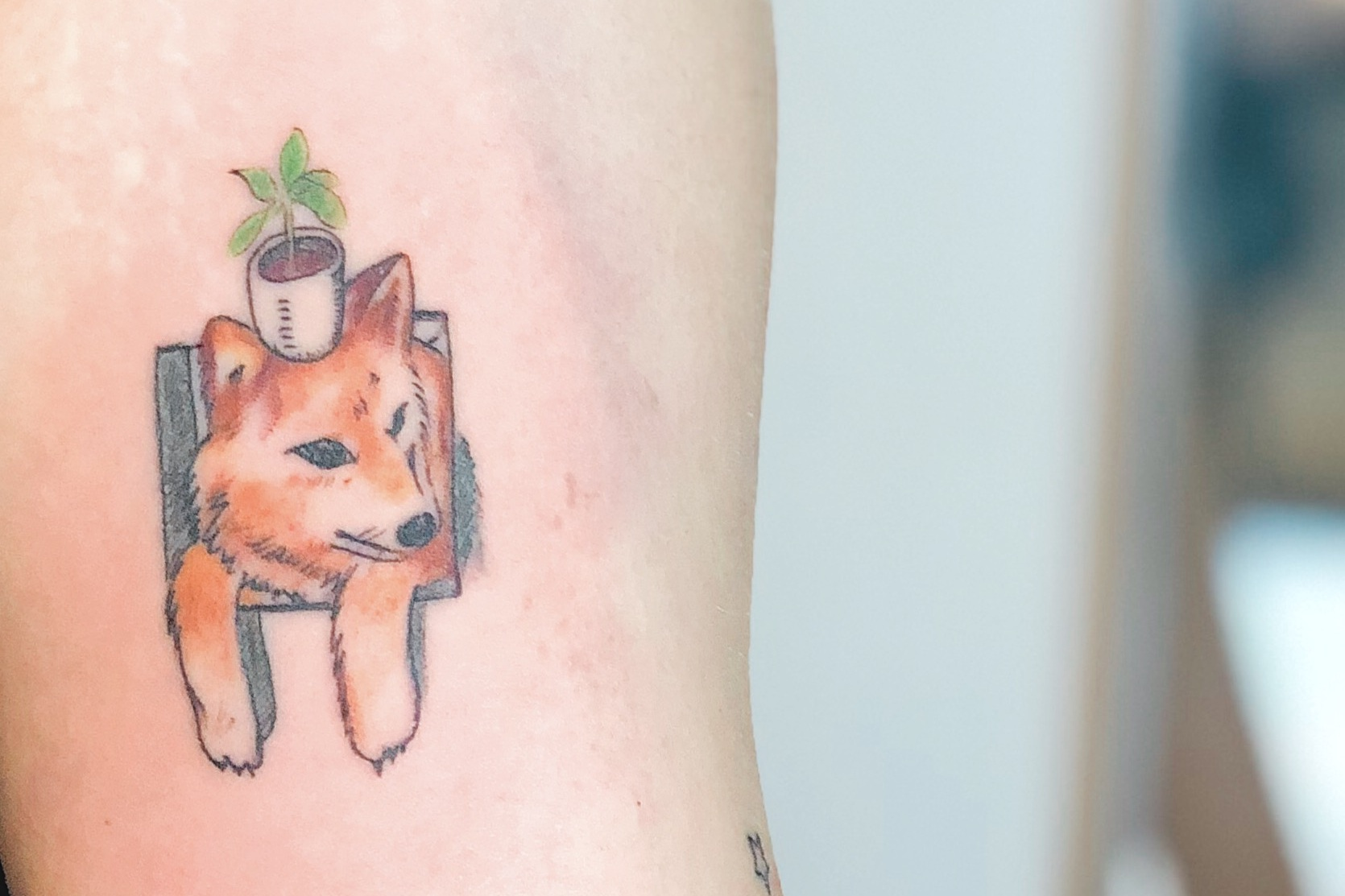 Tattoo Artist:    Hannah Kang      kikkujo's  dog is cute. I like to think the dog is encouraging the growth of his little plant buddy and me.