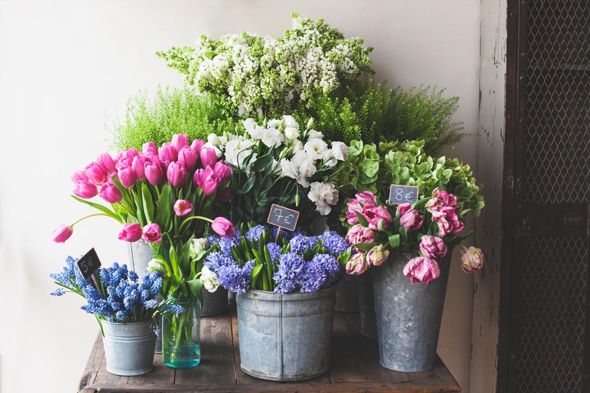 Petit Jardin Floral 1.jpg