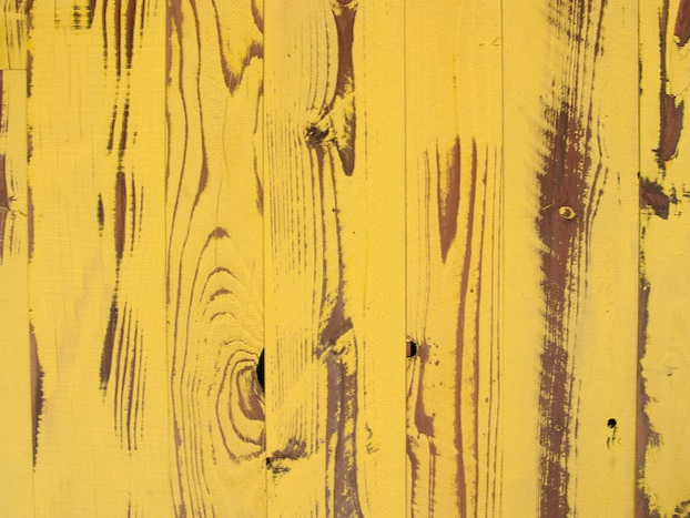 <p>CANARY YELLOW</a></p>