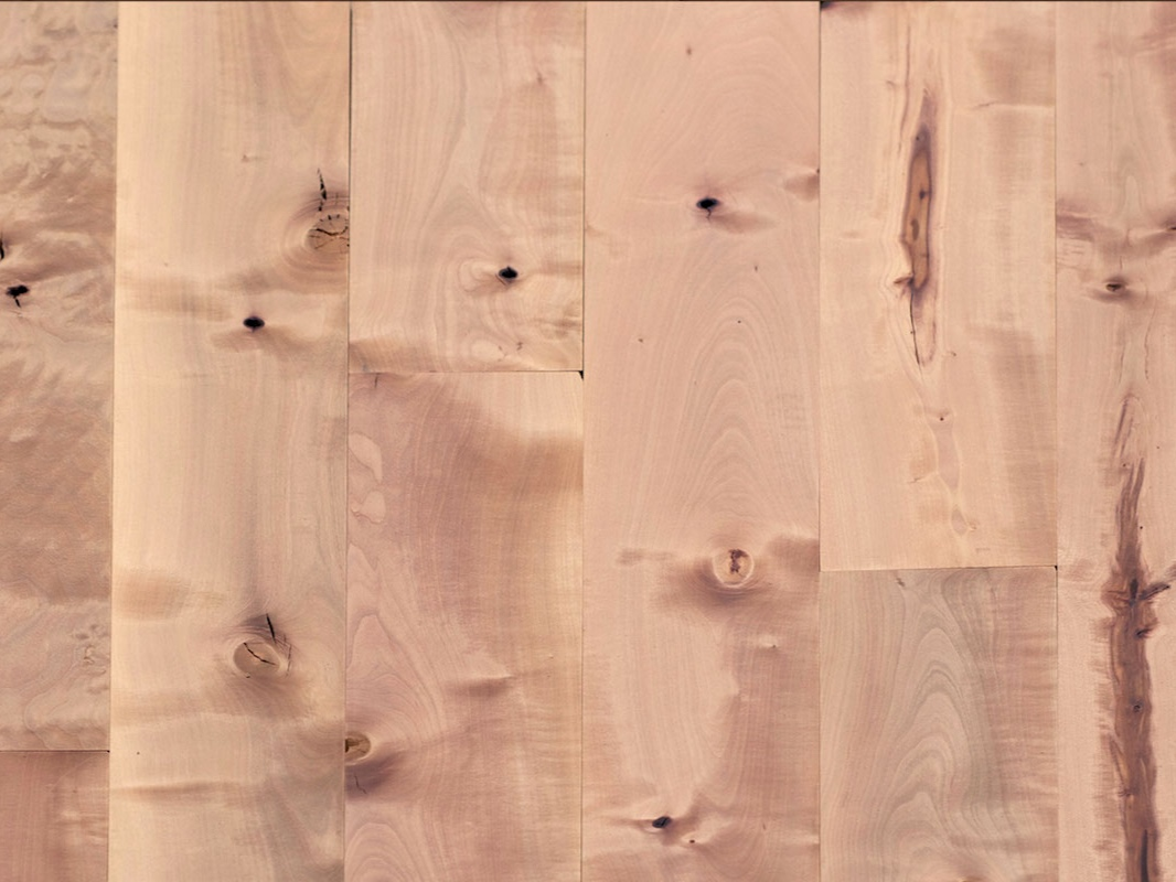 <p>PACIFIC MADRONE</a></p>