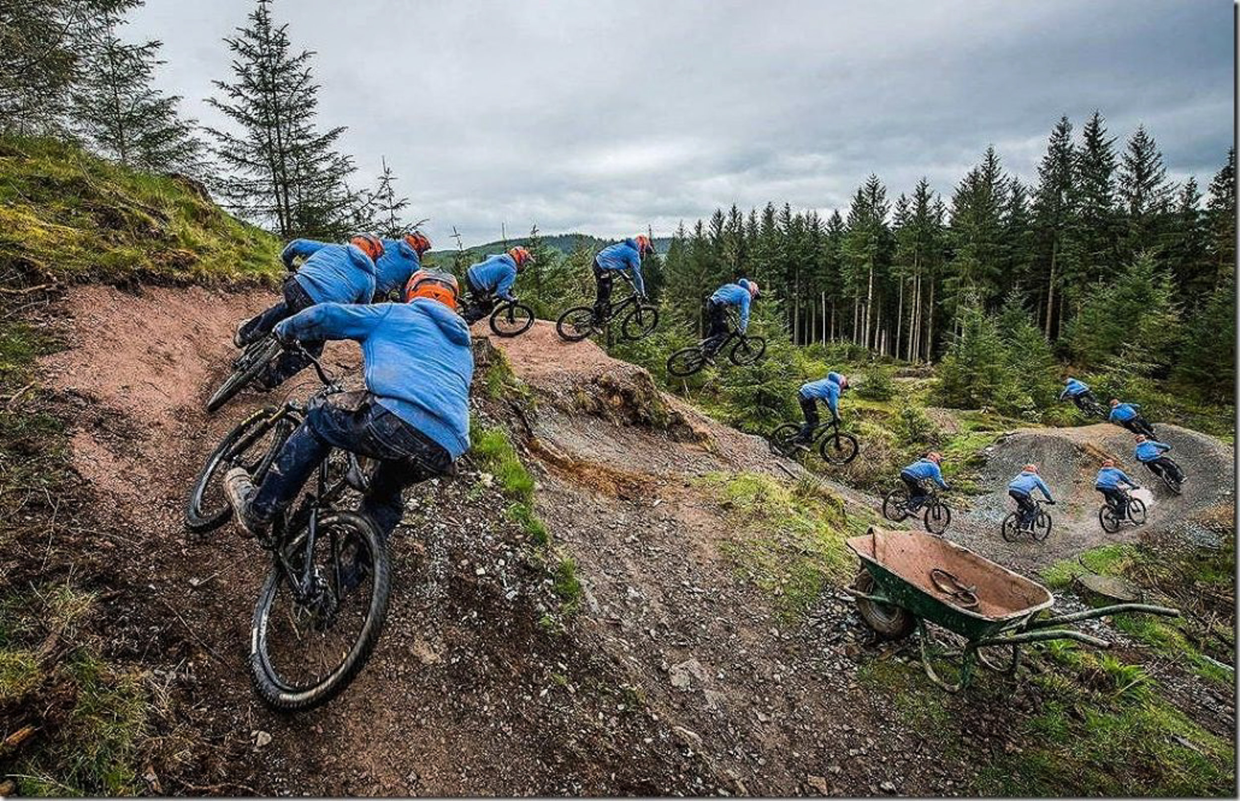 Grizedale Forest MTB