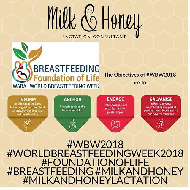 #WorldBreaatfeedingWeek2018 is here! The slogan is:  BREASTFEEDING: Foundation of Life. . . . . . #WBW2018 #WABA #breastfeeding #foundationoflife #milkandhoney #milkandhoneylactation