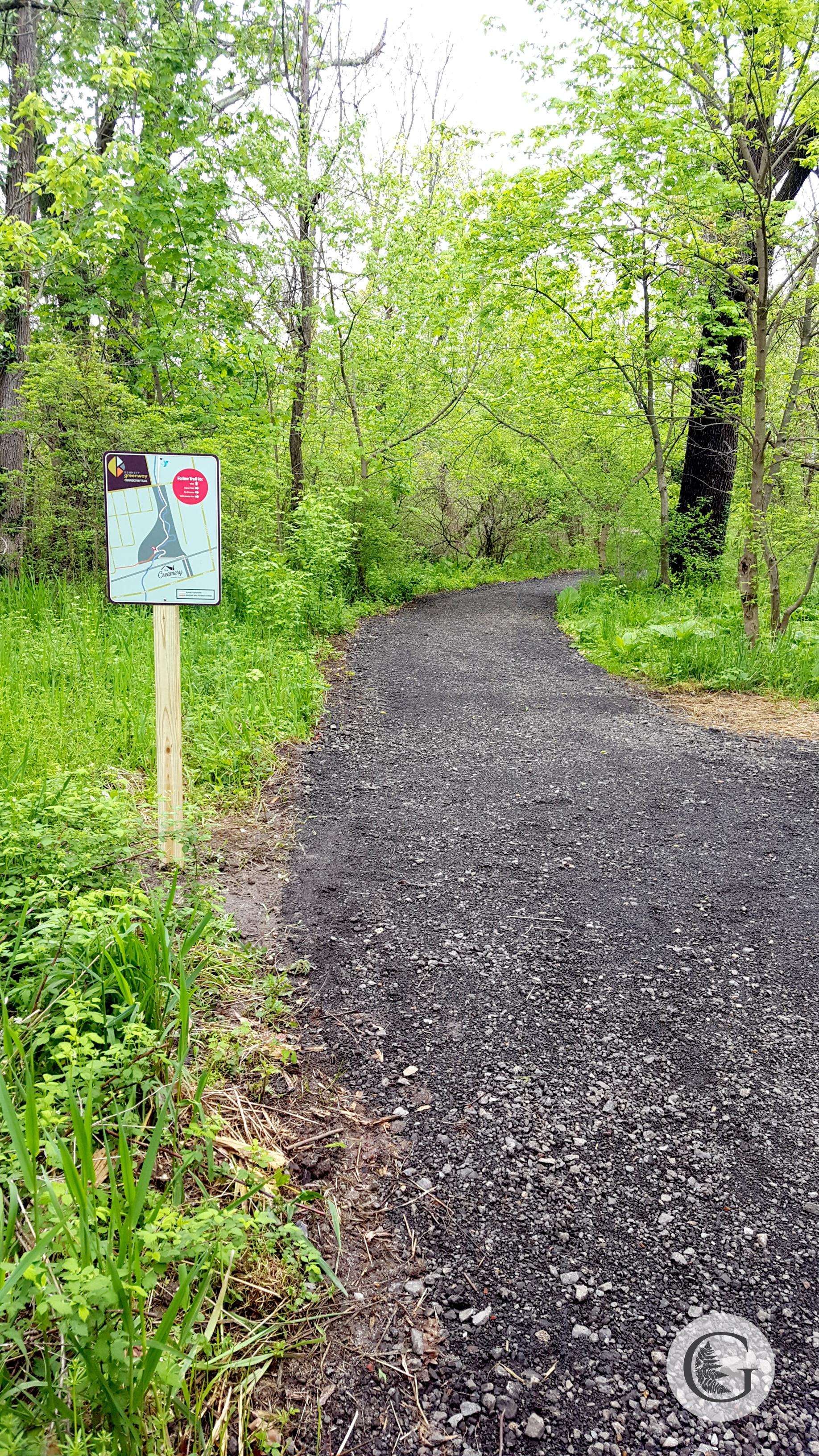 trail-7.jpg