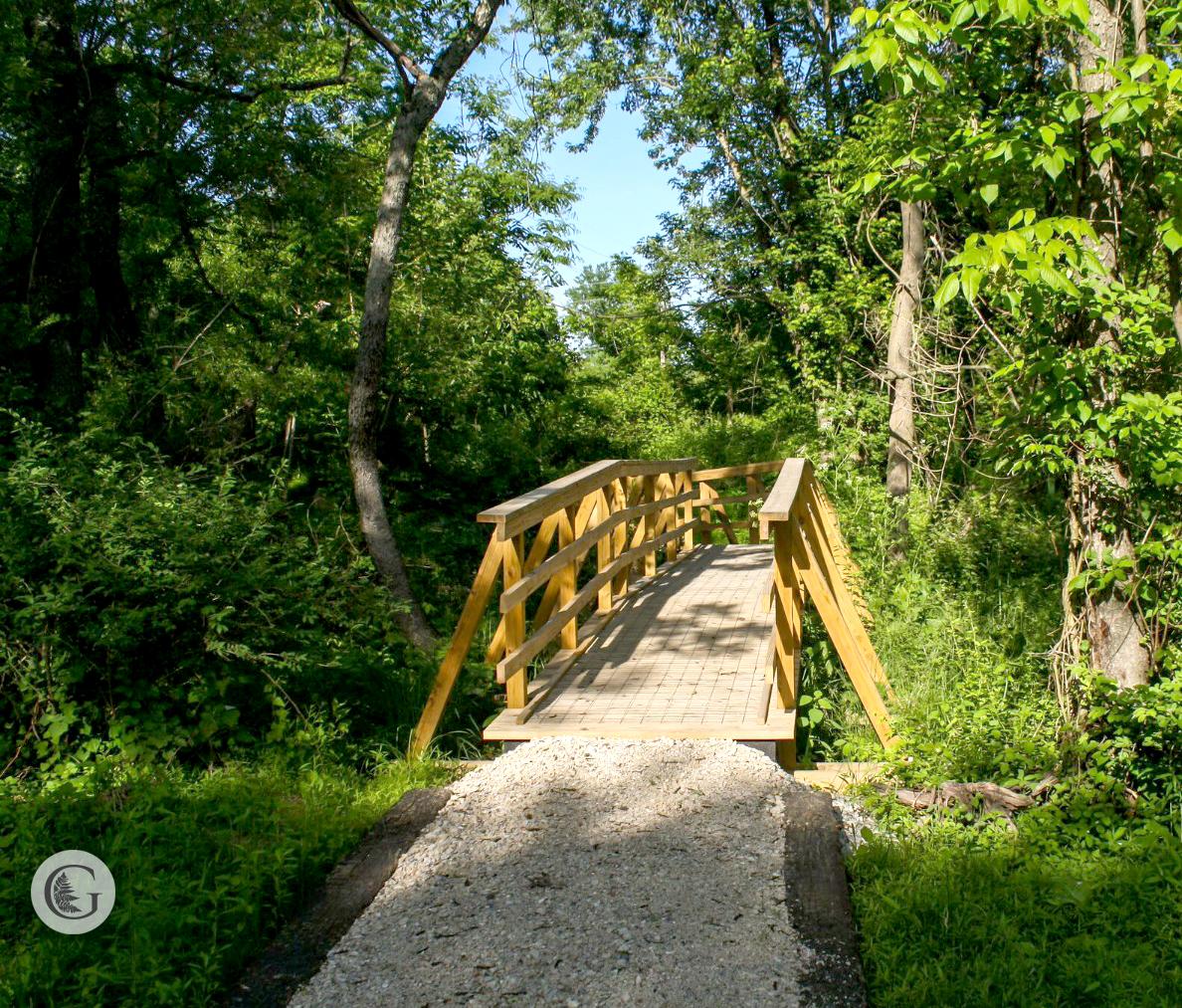 trail-4.jpg